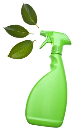 Eco-friendly-move-Green-Clean